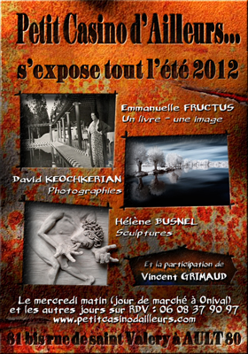 affiche expo 2012 copie
